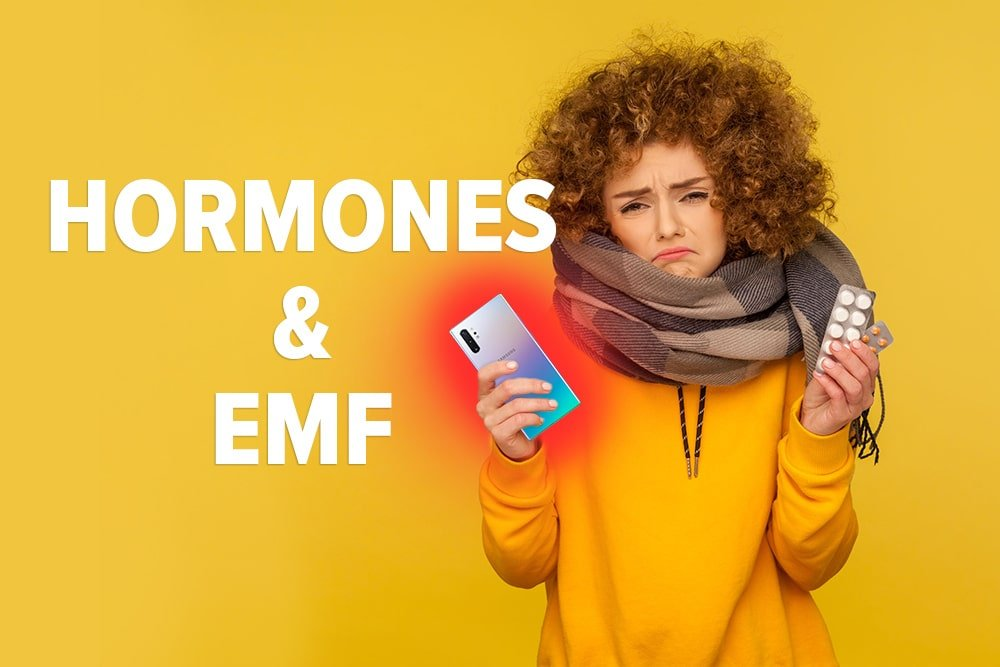DefenderShield EMF Effects on Hormones and the Endocrine System