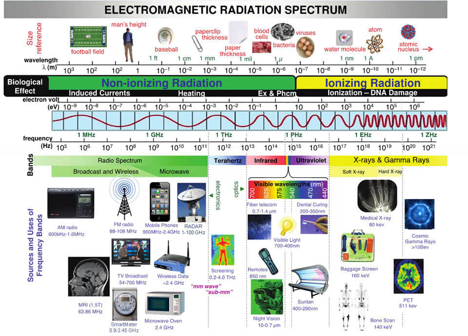 Figure 1. Radiation from Cell Phones and Other Electronic Devices ...