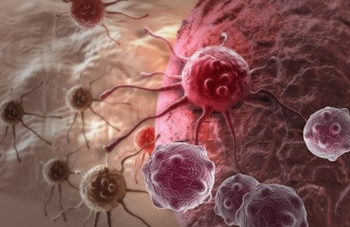 Cancer cell from EMF